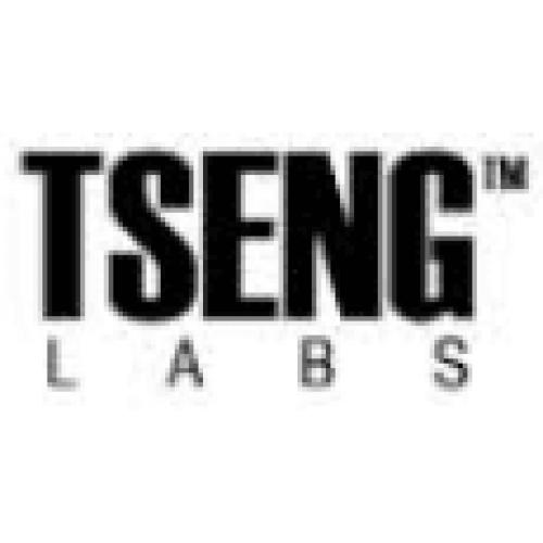ET4000  graphics controller - Tseng Labs